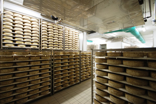 Cheese Shelf