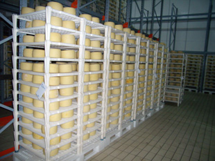 Pecorino Cheese Store