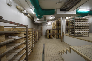 Cheese Storage Systems